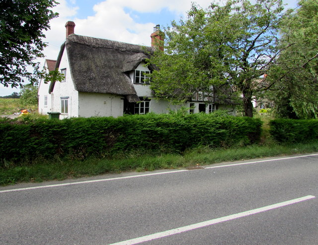 Thatched cottages, Frocester