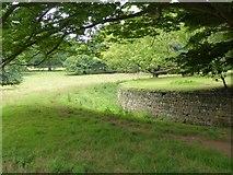 ST5071 : Ha-ha between garden and park, Tyntesfield by David Smith