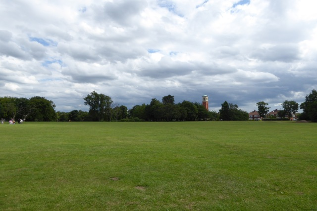Across Albert Park
