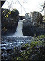NY8828 : High  Force by Martin Dawes