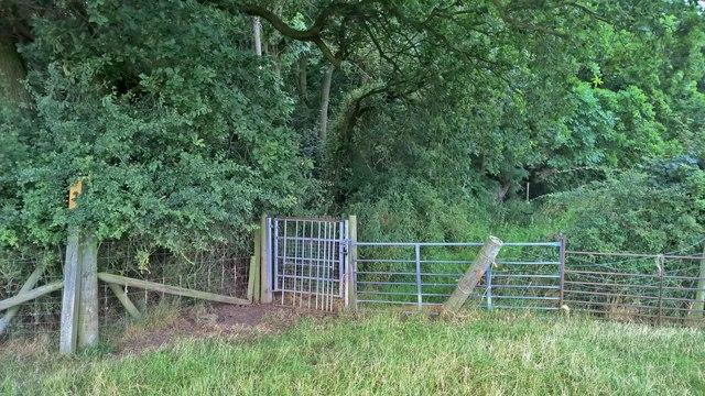 Gate by Duke's Wood