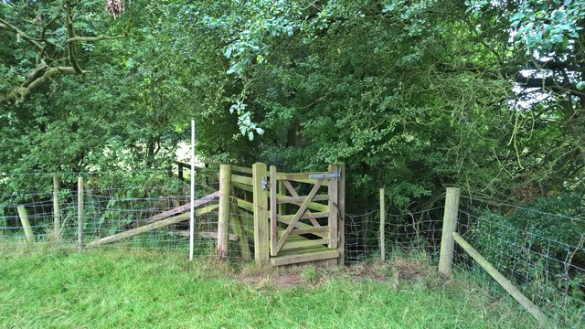 Gate and footbridge by Mather Wood