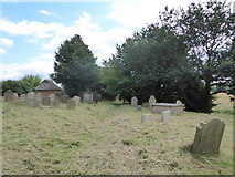 TM3898 : St Gregory, Heckingham: churchyard (e) by Basher Eyre