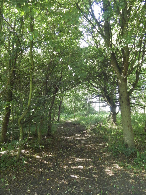 Meadow Walk, Daventry Country Park