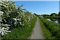 NT0476 : Towpath along the Union Canal by Mat Fascione