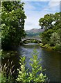 NY2523 : The River Derwent, Portinscale by James T M Towill