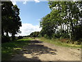 TM0674 : Nan Haze's Lane Footpath to the B1113 Finningham Road by Adrian Cable