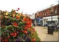 SO9496 : Bilston Flowers by Gordon Griffiths