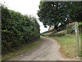 TM0074 : Upper Street Lane Byway to the A143 Bury Road by Adrian Cable