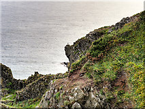 NW9954 : Cliffs at Portpatrick by David Dixon