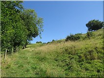 ST6700 : Footpath from Piddle Lane up Black Hill by Becky Williamson