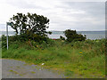 NX0364 : Path to Soleburn Shore, Loch Ryan by David Dixon
