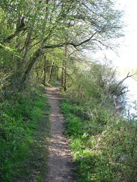 The Thames Path near Eynsham