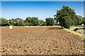 SP0942 : Ploughed field off Stonehouse Lane by David P Howard