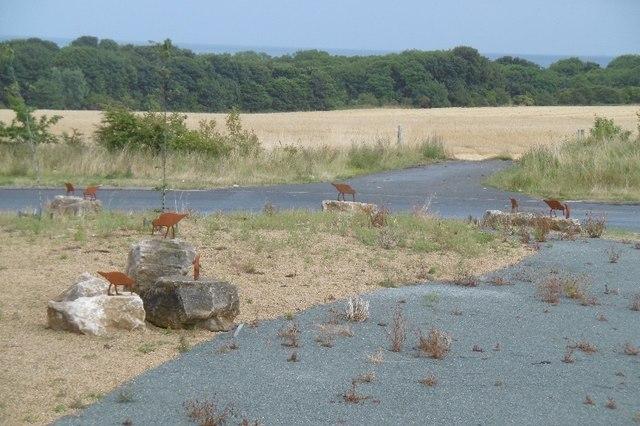 Oystercatchers, Ryhope bypass