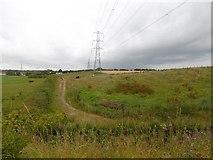 NZ3745 : Murton Moor by Richard Webb