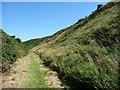 SC2886 : Railway cutting, south of Lhiannag by Christine Johnstone