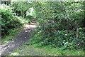 SO1800 : Sirhowy Valley Walk, east of Argoed by M J Roscoe