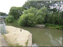 TQ3784 : River Lea north of London Stadium by David Smith