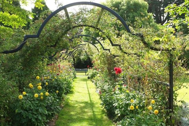 Rose pergola, Tessier Gardens