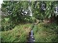 SK6413 : Queniborough Brook by Tim Glover