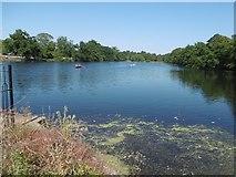 TQ4387 : The Lake in Valentines Park by Marathon