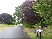 TQ4387 : Path and wildlife area, Valentines Park, Ilford by David Smith