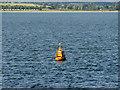 NO4929 : Special Mark in the Tay Estuary by David Dixon
