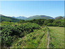 SH7357 : A footpath above Capel Curig by Richard Law