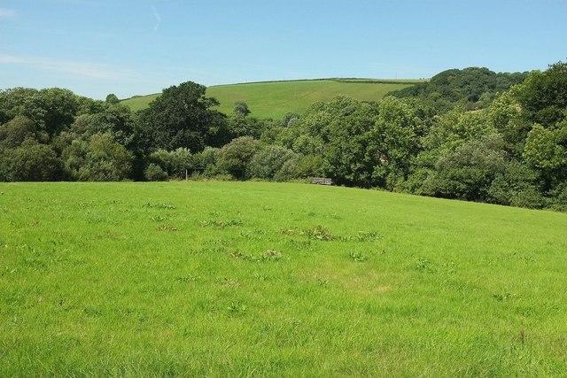Field by the Little Silver Stream