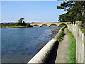 NU2410 : Lovers' Walk and road bridge over the River Aln by John Lucas