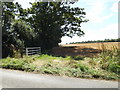 TL9971 : Footpath to Badwell Road by Adrian Cable