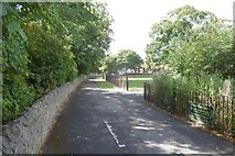 NZ4918 : Path, Albert Park by Richard Webb