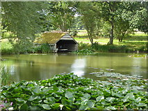 TR0653 : The boat house on the lake at Chilham Castle by pam fray