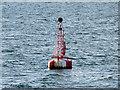 NO6231 : Tay Estuary Safe Water Mark (Fairway Buoy) by David Dixon