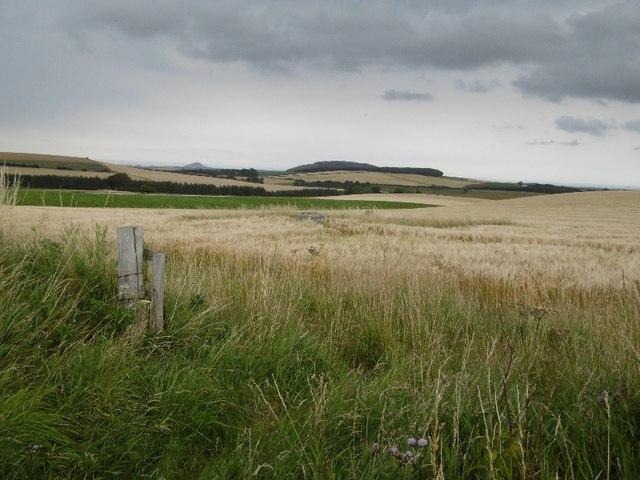 ROC post, Sled Hill