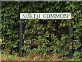 TL9775 : North Common sign by Adrian Cable