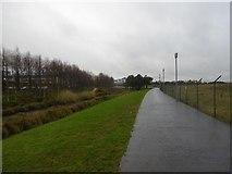 NT2276 : Forthquarter Park by Richard Webb