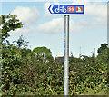 J5973 : National Cycle Network (route 99) sign, Drumfad, Millisle/Carrowdore (August 2016) by Albert Bridge