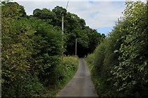 TQ6662 : Holly Hill by Chris Heaton