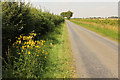 TF0681 : Lane between Snelland and Snarford by Richard Croft