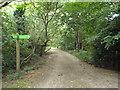 TQ3764 : Paths on Shirley Heath by Malc McDonald