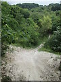 TL0328 : Steep path off the Icknield Way Trail by Peter S