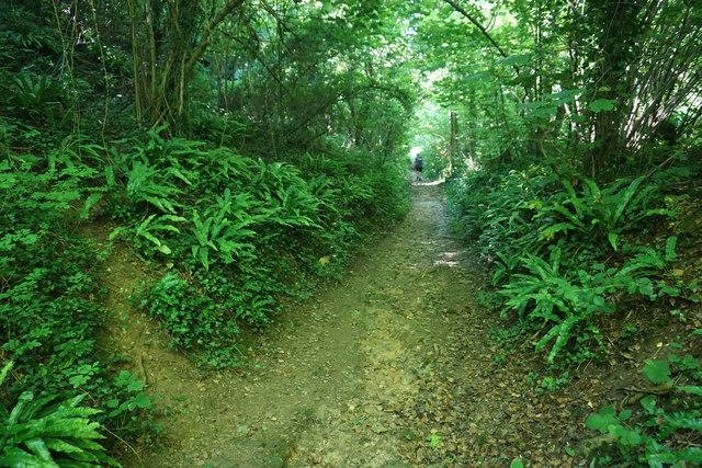 Path down Wortley Hill