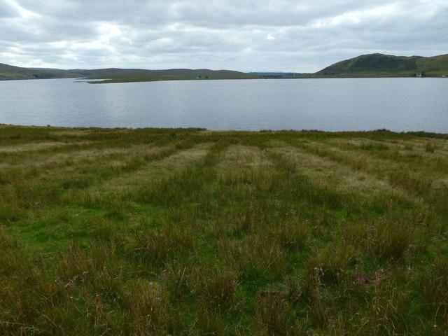 Near the shore of Loch Thom