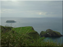 D0644 : Carrick-a-Rede and Sheep Island by Carroll Pierce