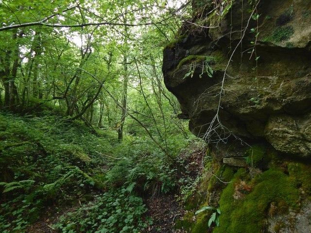 Rock face in Garrawy Glen