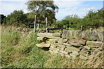 SE2405 : Stile at Nether Lea Farm by Ian S