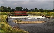 SD8100 : River Irwell by Peter McDermott