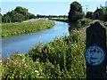 TF5600 : The Well Creek near Nordelph by Richard Humphrey
